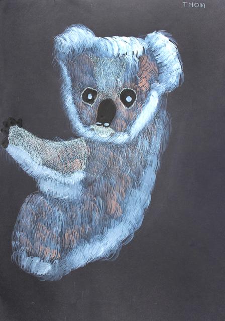 , 'Koala,' 2011, Studio A