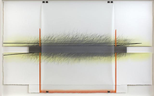 , 'Following Lines 5 ,' 2016, Pangolin