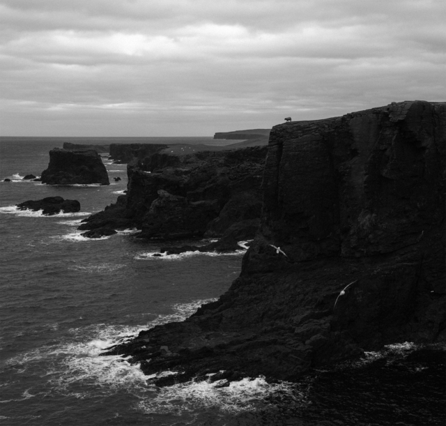 , 'Eshaness, Shetland, from Near the Wind,' 2017, The Photographers' Gallery