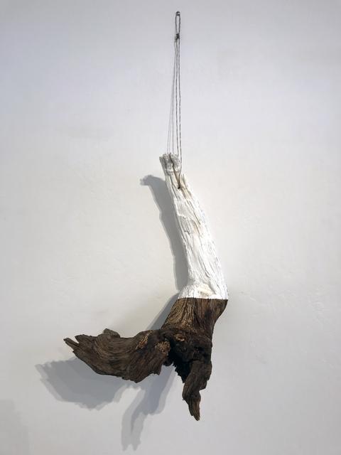 Trent Burkett, 'Oasis Series: Mesquite', 2016, Sculpture, Found object, JAYJAY