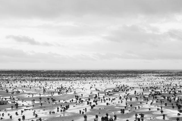 , 'Horizons 9169,' 2015, Galerie Dumonteil