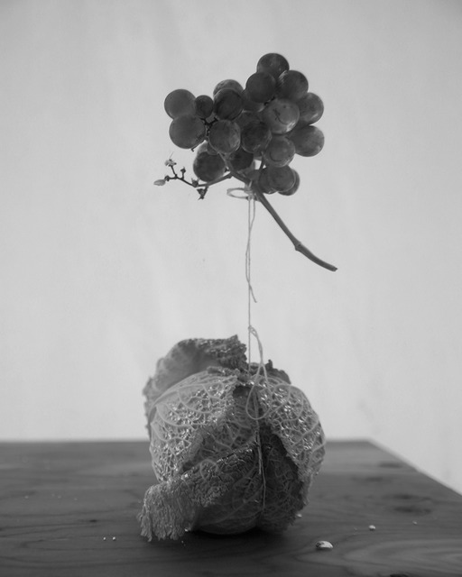 , 'Napa grapes,' 2015, CURRO