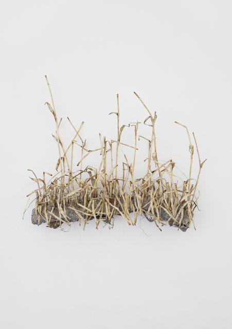 , 'Natur II / Nature II,' 2017, Galleri Magnus Karlsson