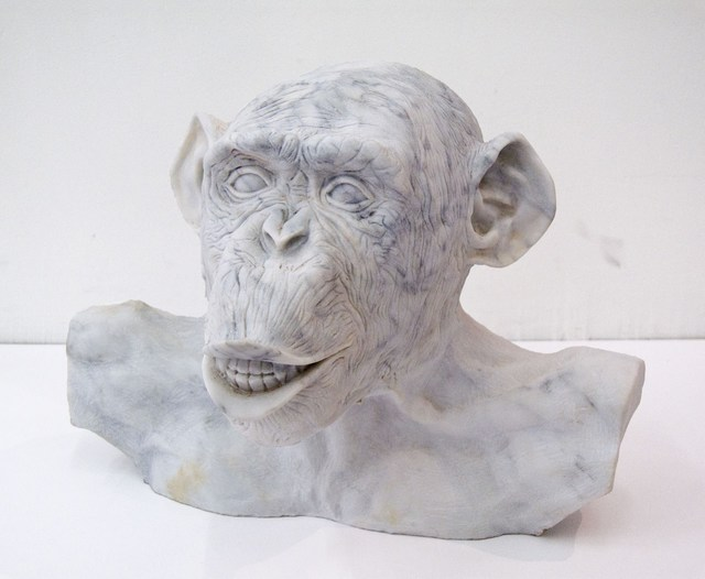 Lisa Roet, 'Marble Chimp Bust No.5', 2015, Gow Langsford Gallery