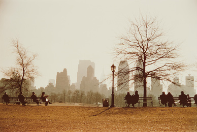 Looking Across Sheep Meadow Toward Central Park South, New York City
