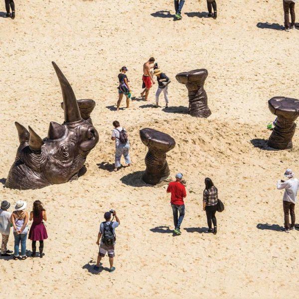 , 'Shandu - Tamarama Beach, Sydney & Monarto Zoo, Adelaide,' , Gillie and Marc Art Gallery