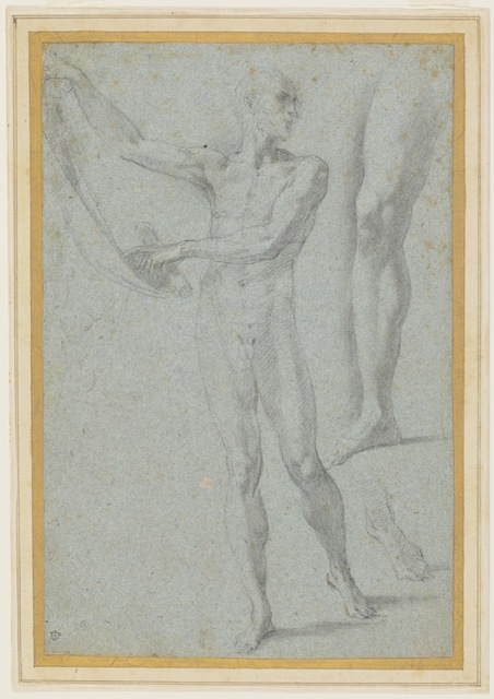 , 'Standing Nude Man with Scroll,' 1503-1540, Bowdoin College Museum of Art