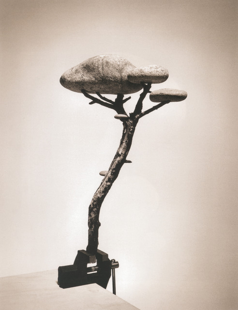 Chema Madoz, 'Untitled, Madrid (Piedra Bonsai)', 2000, Photography, Gelatin silver print, Robert Klein Gallery