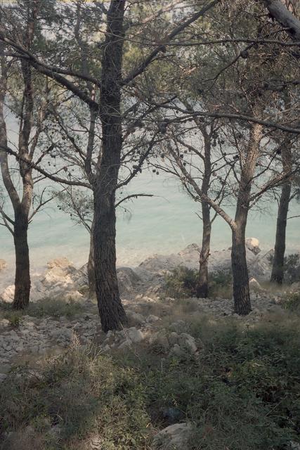 Renate Ariadne Van Der Togt, 'Acid Beach', 2018, Red Hook Labs