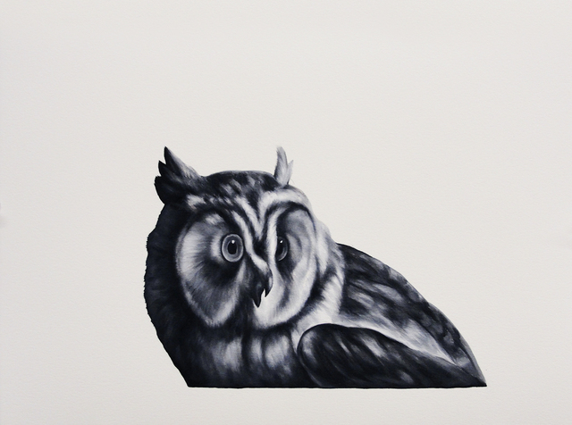 Shelley Reed, 'Owl (after Duranti)', Painting, Visions West Contemporary