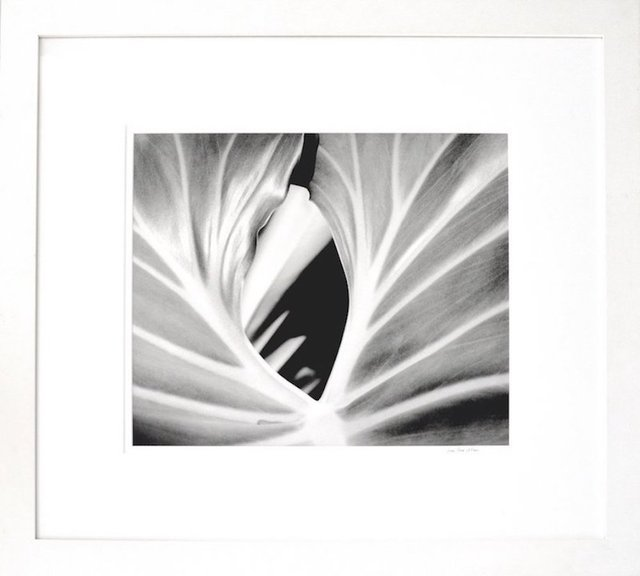 , 'The Leaf,' 2000, The Art Design Project