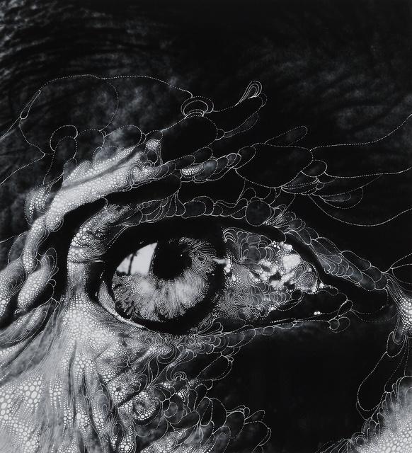 """, 'Eye #11 (After Bill Brandt's """"Henry Moore's eye, 1972""""),' 2012, Edwynn Houk Gallery"""