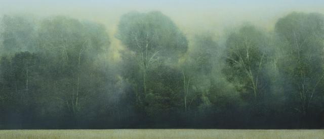 , 'Meadow Slice,' 2018, Gallery NAGA