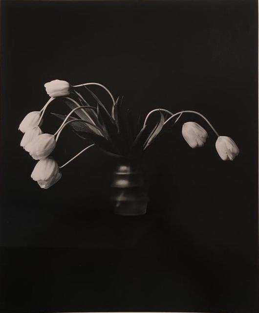, 'From the series Still Life, Untitled,' 1986, Rolf Art