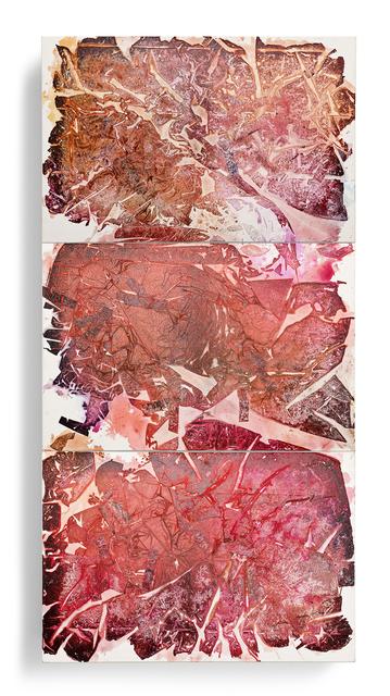 , 'Rose (Tryptich),' 2016, IAILA