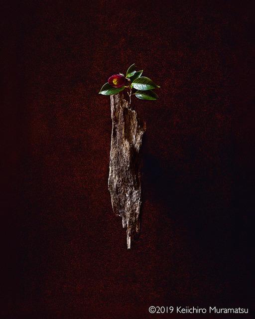 Keiichirô Muramatsu, 'SHINE A LIGHT', 2019, Galerie Marie-Robin