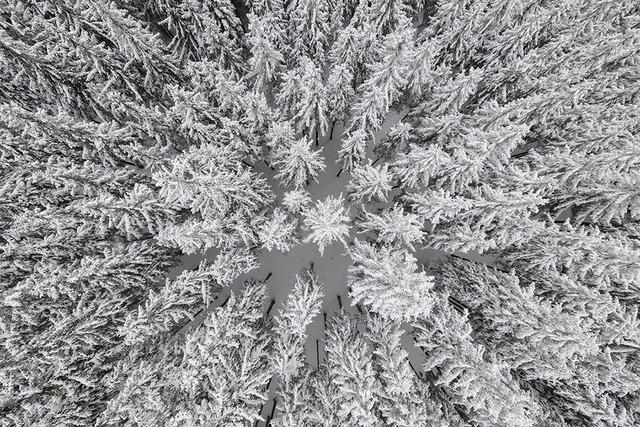 , 'Depth of Winter #18,' 2013, Photo12 Galerie