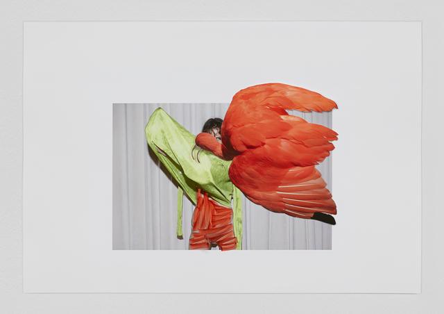 Viviane Sassen, 'Eudocimus Ruber', 2017, Stevenson