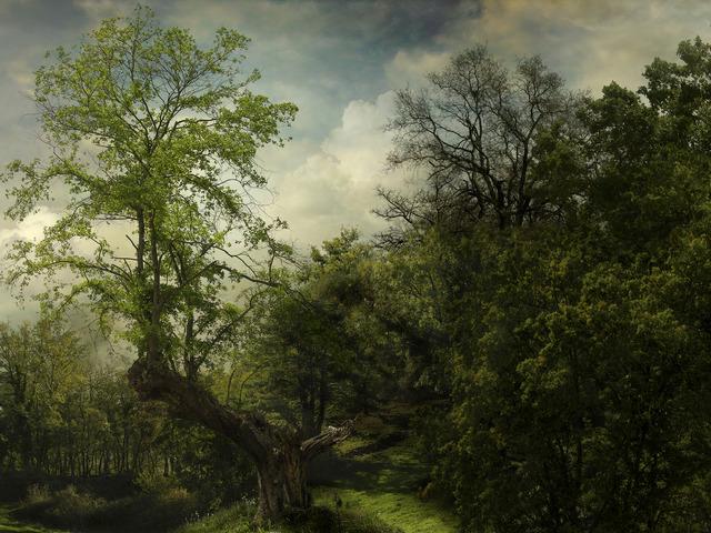 , 'Pintoresco 14,' 2007, Trinta