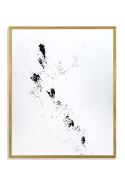 , 'Unrejected Wild Flora,' 2017, Alfonso Artiaco