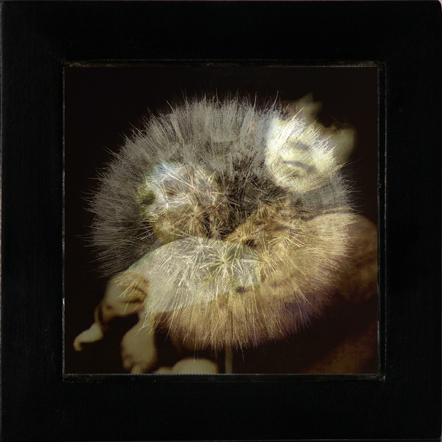 , 'Memory,' 2005, Turner Carroll Gallery