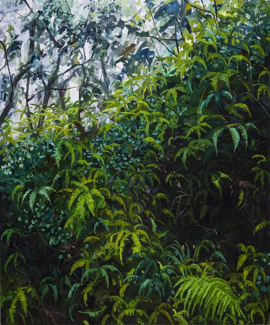 , 'Ferns,' 2018, DC Moore Gallery