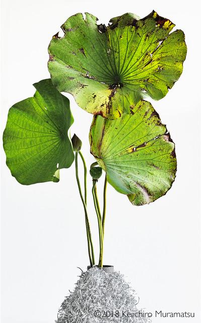 Keiichirô Muramatsu, 'Lotus 16', 2018, Galerie Marie-Robin