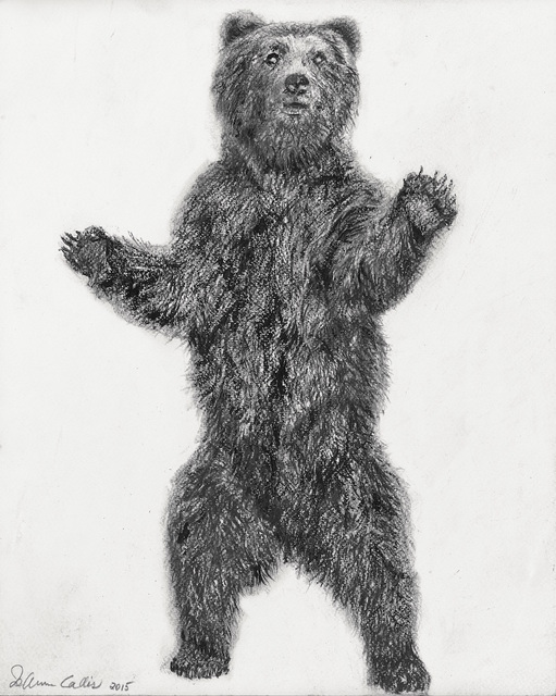 Jo Ann Callis, 'Bear', 2015, Drawing, Collage or other Work on Paper, Mixed media drawing, ROSEGALLERY
