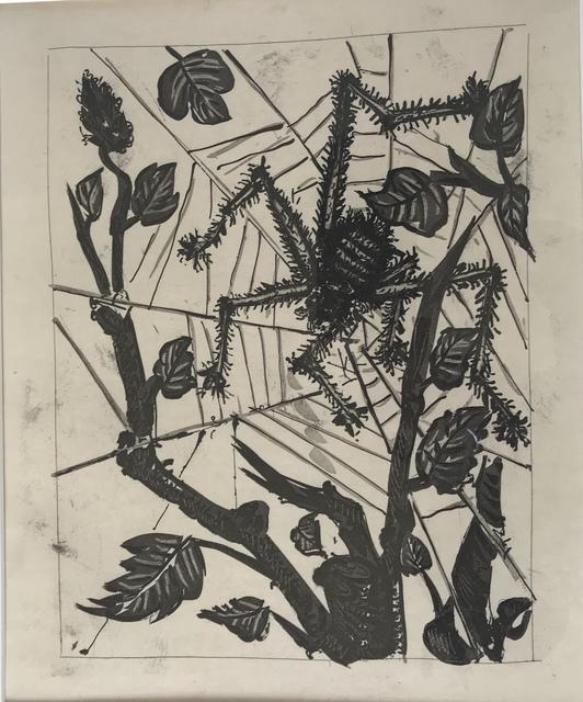 Pablo Picasso, 'L'Araignée (The Spider)', 1936, Les Yeux du Monde Gallery