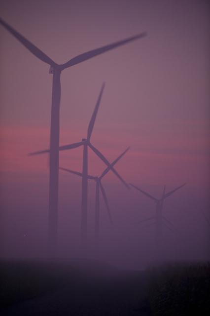 , 'Purple Haze,' 2008, Foto Relevance
