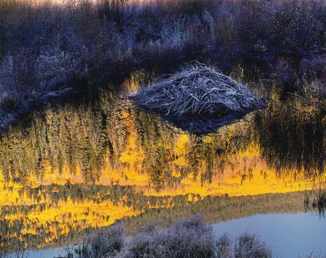 Christopher Burkett, 'Beaver Lodge at Sunrise, Colorado', 1997, Photography West Gallery