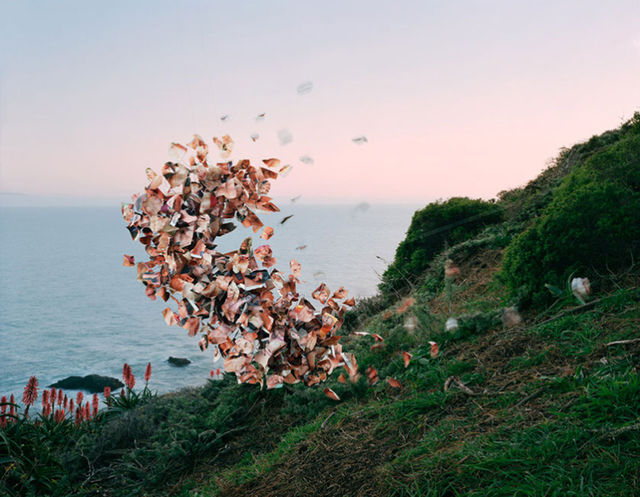 , 'Lusty Wives Vol. #81, Muir Beach, California,' 2015, Jackson Fine Art