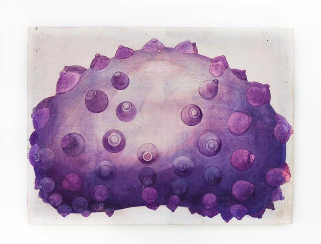 , 'Echinodermata (I),' 1966, Silberkuppe