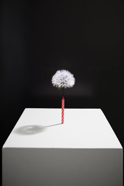 , 'Birth,' 2017, Galerie Paris-Beijing