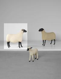 Mouton 'Brebis'
