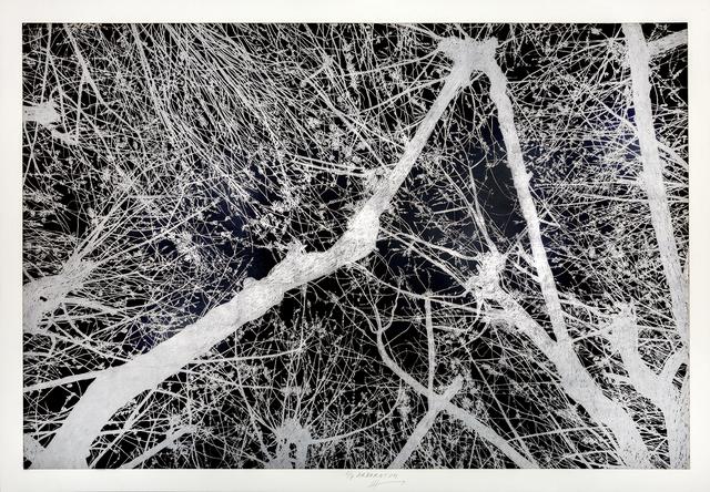 Jan Hendrix, 'Arboretum 7', 2018, Anémona Editores