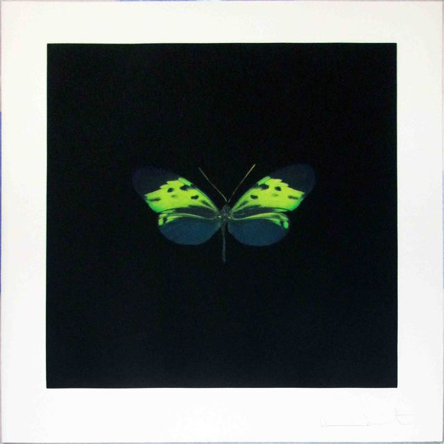Damien Hirst, 'The Souls on Jacob's Ladder Take Their Flight (Small Green)', 2007, Hamilton-Selway Fine Art