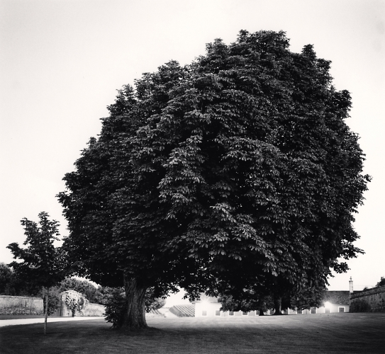 Michael Kenna, 'Chateau Lafite Rothchild, Study 12, Bordeaux, France', 2012, Weston Gallery