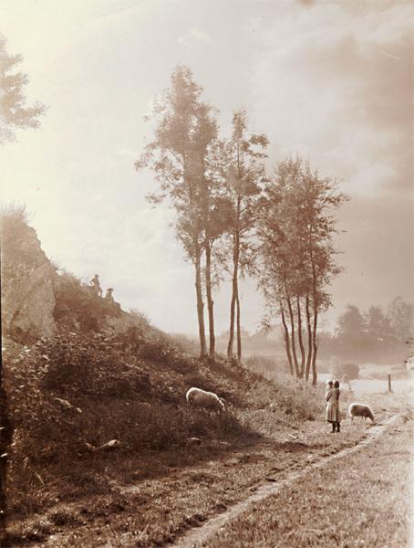 Léonard Misonne, 'Watching the Sheep', Contemporary Works/Vintage Works