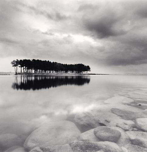 , 'Pine Trees, Study 3, Wolcheon, Gangwondo,' 2011, Robert Mann Gallery