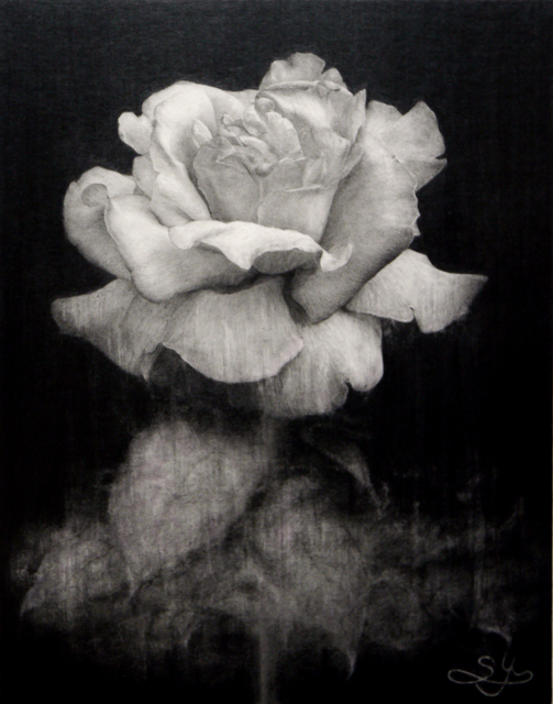 , 'Blooming in the night,' 2019, Gallery Seek