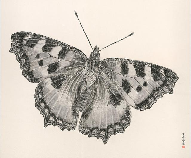 , 'Butterfly 2014-7,' 2014, Alisan Fine Arts