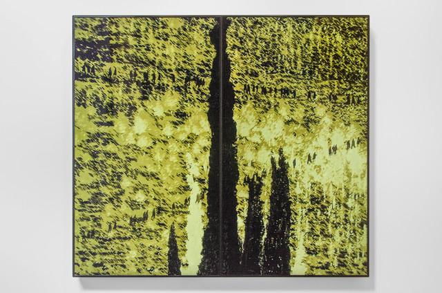 , 'Yaar (Laila),' 2014, Shoshana Wayne Gallery