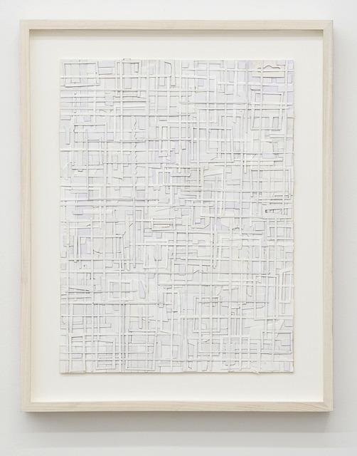 , 'Snow-driven, hallucinations,' 2016, CES Gallery