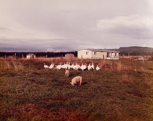 Joel Sternfeld, 'Troutdale, Oregon', 1980, Rago