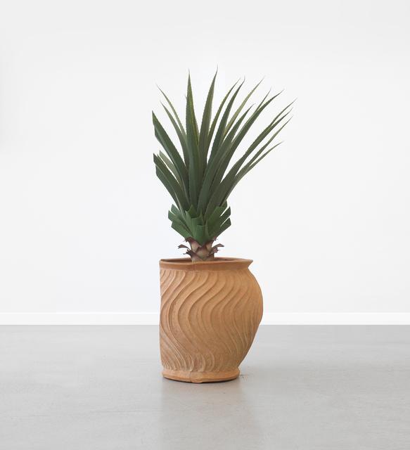 Pablo Lobato, 'Poda (Dracena, #1)[Prunning (Dracena, #1)]', 2014, Installation, Mixed media, Bendana   Pinel Art Contemporain