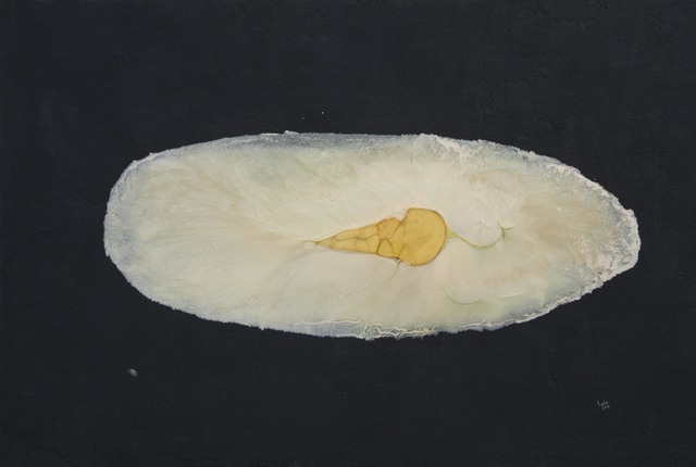 , 'Cocoon,' 2016, al markhiya gallery