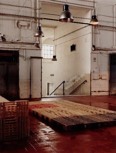 , 'm.d.p.n. 23,' 2002, Mai 36 Galerie