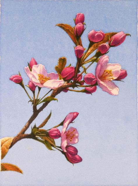 , 'Apple Blossoms,' 2017, Garvey | Simon