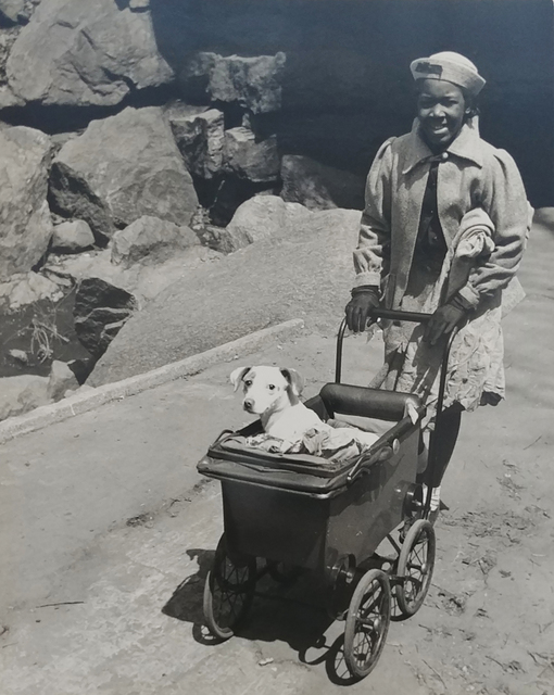 John Albok, 'Harlem (Girl with Dog in Baby Carriage)', 1934, Photography, Vintage gelatin silver print, PDNB Gallery